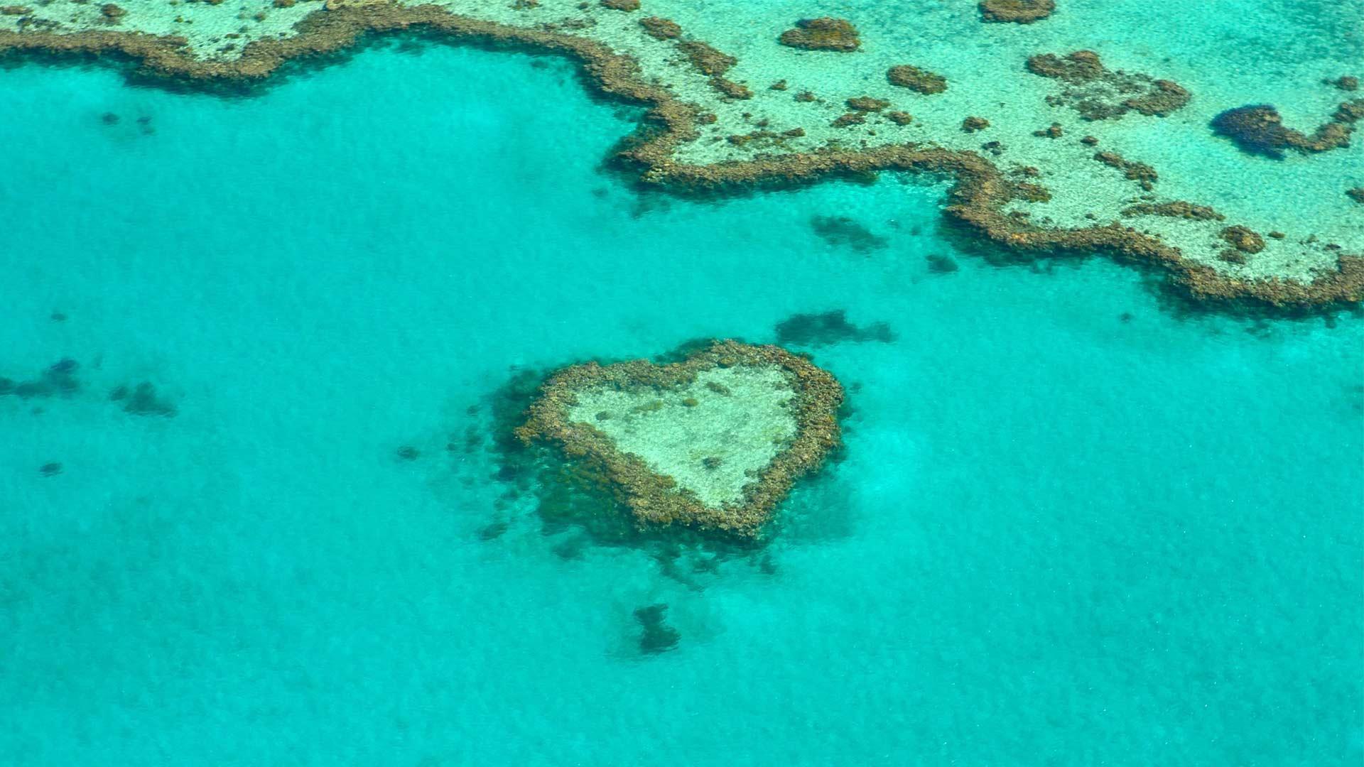 Australian Honeymoon
